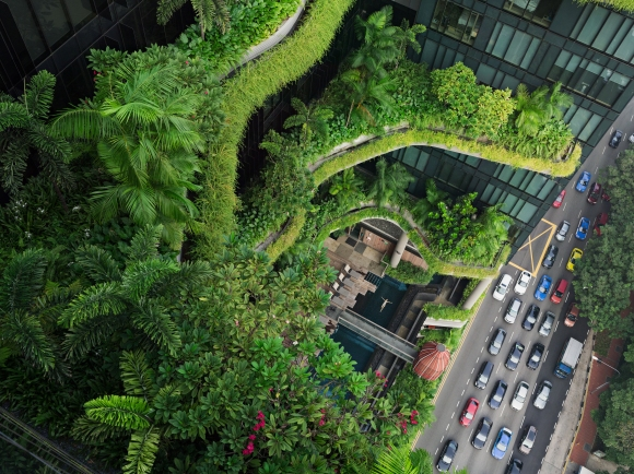 Esme Swimming Parkroyal on Pickering Singapore C Lucas Foglia Courtesy of Michael Hoppen Gallery.jpg