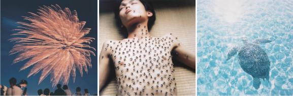 v.l.n.r. Rinko Kawauchi, 'Hanabi 5', 2001, 'Utatane 103', 2001 en 'Aila 57', 2004. Han Nefkens H+F Collection - Huis Marseille. Courtesy ROSEGALLERY, via Huis Marseille